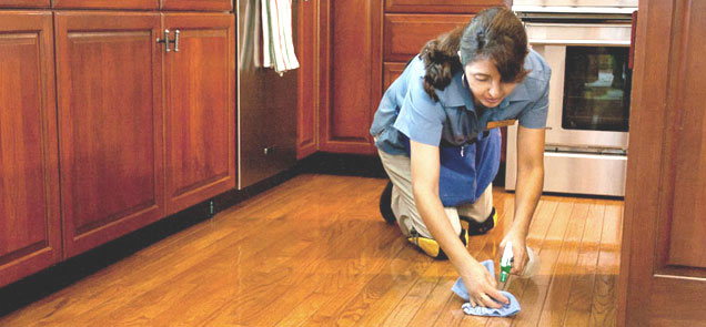 Абонаментно почистване на домове в София